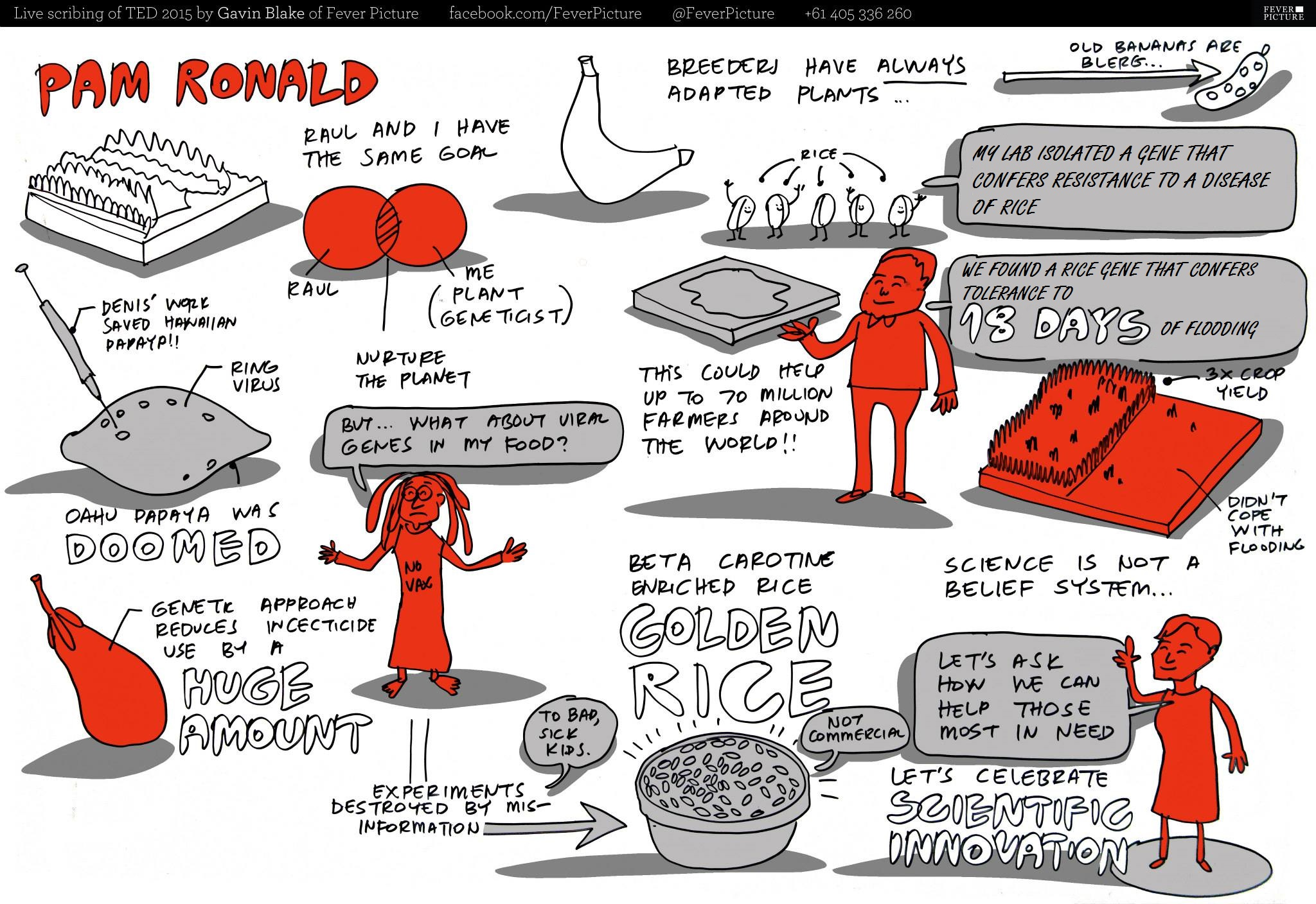 Comic depicting the main ideas from Dr. Pamela Ronald's 2015 TED talk by Gavin Blake, FeverPicture